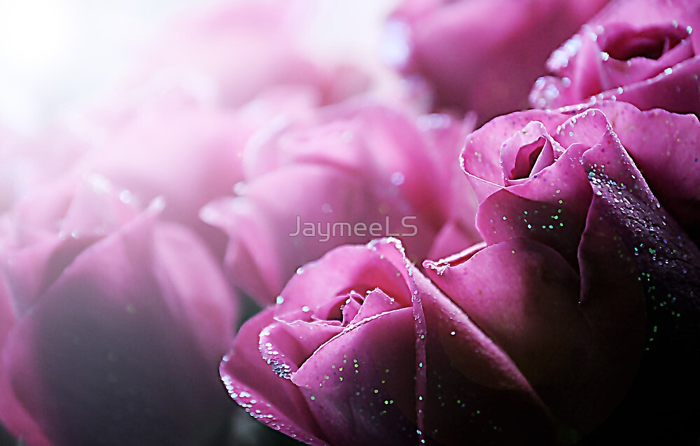 Pretty in Pink by JaymeeLS