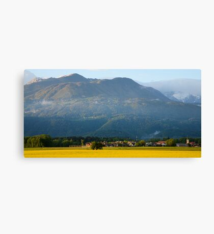 rapeseed field in Brnik with Kamnik Alps and Krvavec ski resort in the background, Slovenia Canvas Print