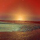 THE GOLDEN BEACH by leonie7