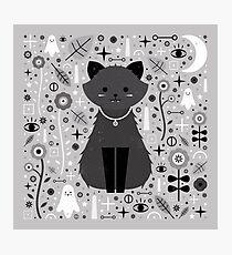 Kitten Fang Photographic Print