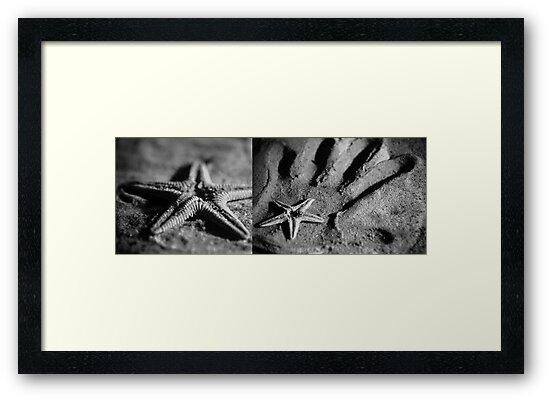 Starfish in my Hand by Maliha Rao