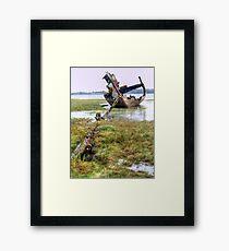 Clarain FD119 - Fleetwood Marsh Framed Print