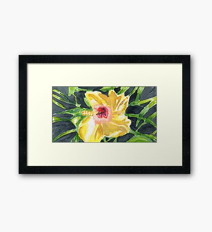 Stans' Hibiscus Framed Print