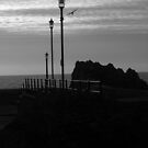 Line of ornamental lamp posts against a mackerel sky with seagull by Leyh