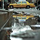 Cab Reflections by Steve Edwards