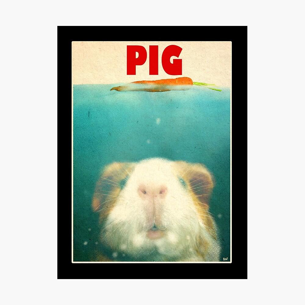 Pequeño cerdo de mar Lámina fotográfica