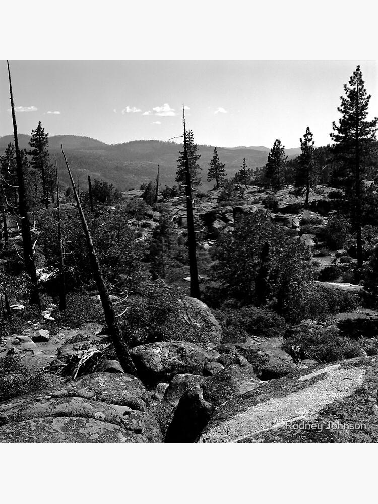 Near Hetch-Hetchy in Yosemite N.P. by rodneyj46