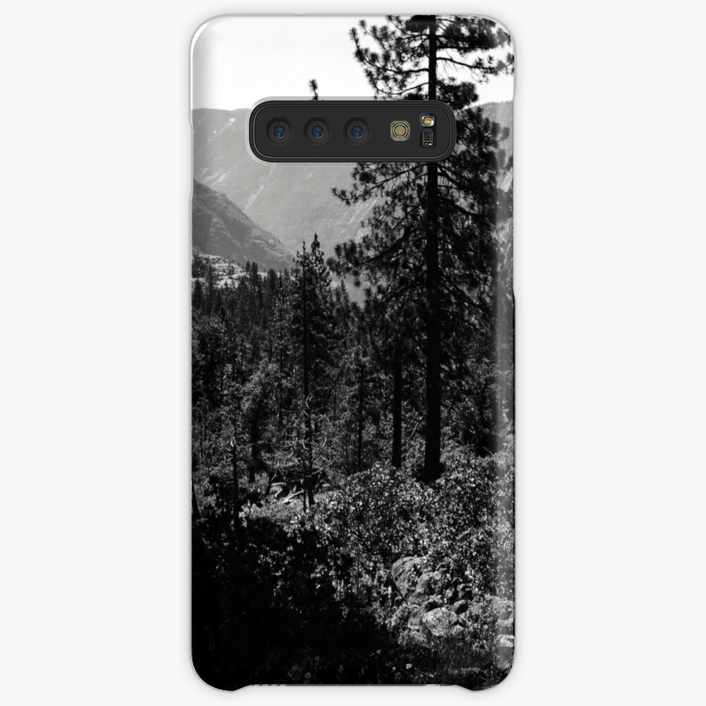 Near Hetch-Hetchy in Yosemite N.P. Case & Skin for Samsung Galaxy