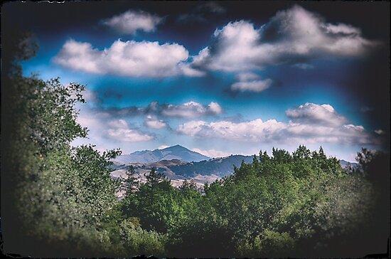 California Landscape by Robert Plummer