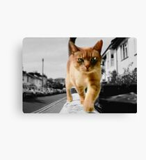 time to hunt Canvas Print