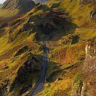 Trotternish Ridge (3) by Karl Williams