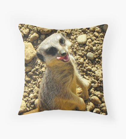 Mm...tasty-Meerkat enjoying a snack Throw Pillow