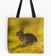Cute Rabbit Wildlife Golden Hour Tote Bag