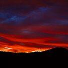 Sunset from our yard. Brisbane, Queensland, Australia.  by Ralph de Zilva
