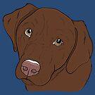 Chocolate Labrador Retriever  by rmcbuckeye