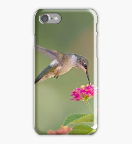 Hummingbird and Lantana iPhone Case/Skin