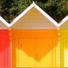 Beach Huts, Scarborough by Robert Steadman