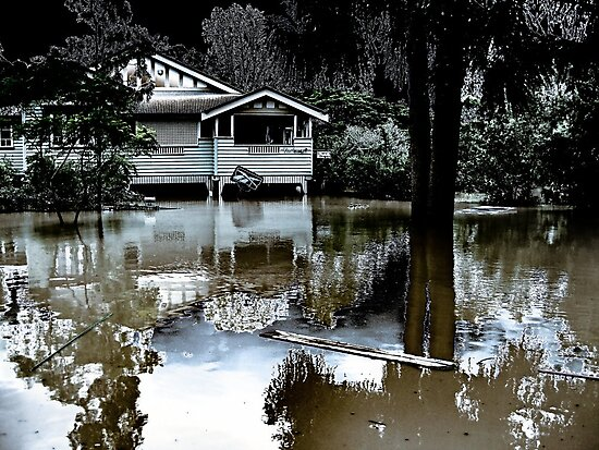 Brisbane Floods 2011- Inundation - Flooded By Moonlight by Neil Ross