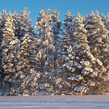 Suomi by Naumovka