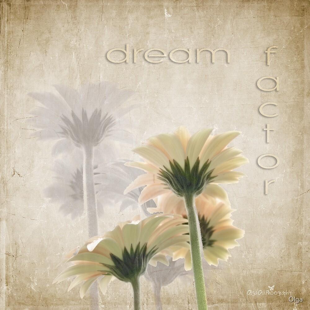 Dream factor by Olga