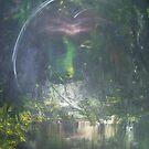 Enter The Buddha by Jeff Schauss