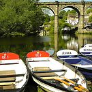 Knaresborough in Sunshine by Eileen O'Rourke
