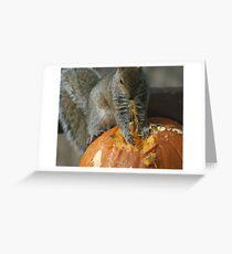 Pumpkin on the Menu Greeting Card