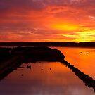 Wrecked Sunrise by Patrick Reid