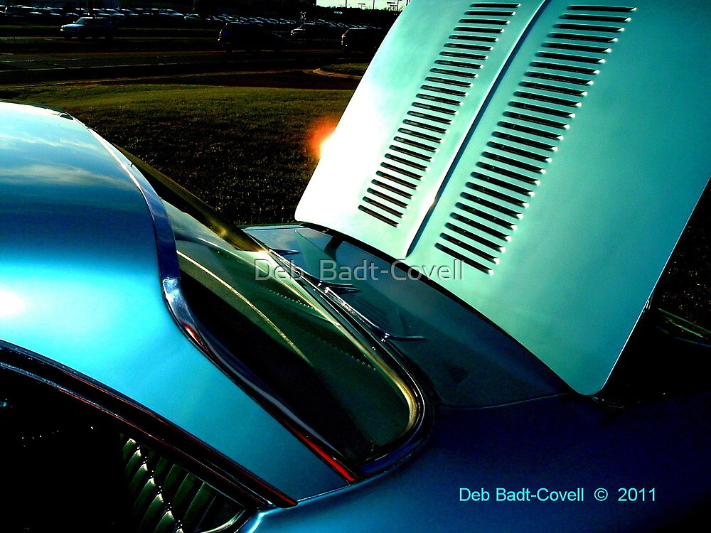 Untitled by Deb  Badt-Covell