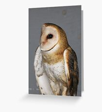 Barn Owl - Casper Greeting Card